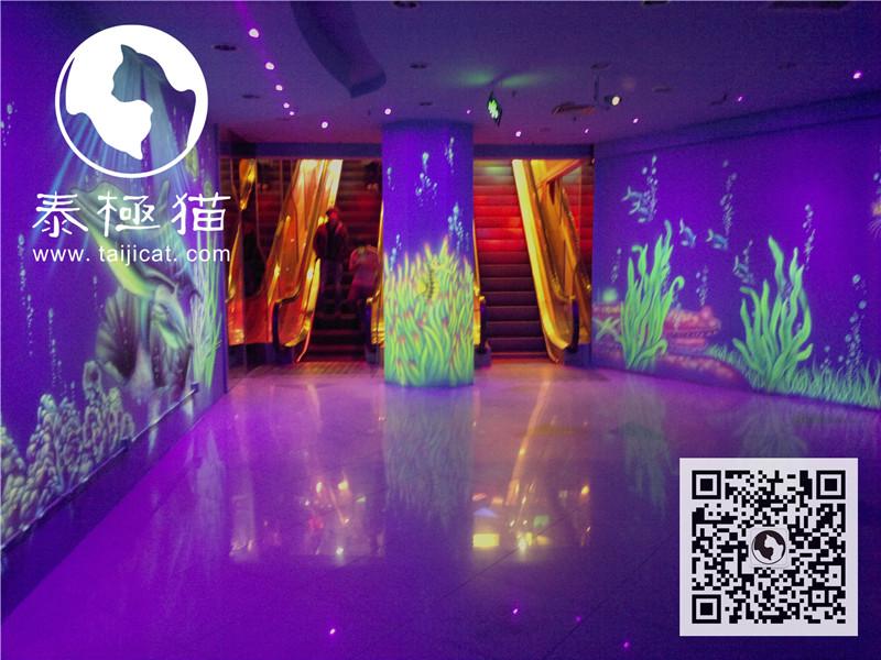 泰极猫绘画海底世界荧光画与隐形画夜光3d画展案例
