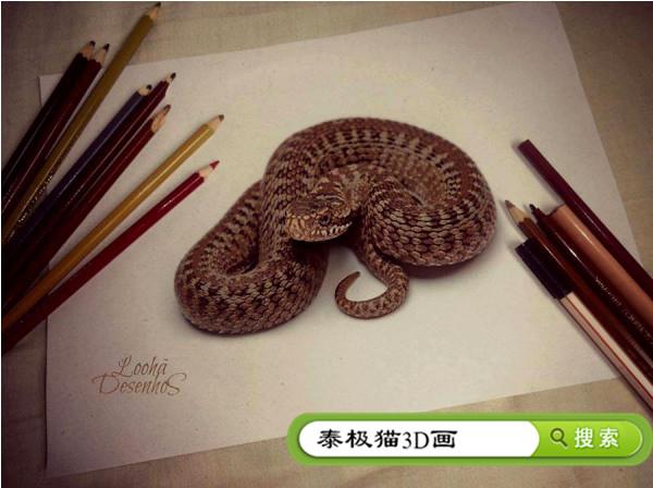纸上3d立体画蛇