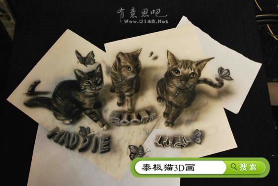 纸上3d立体画猫